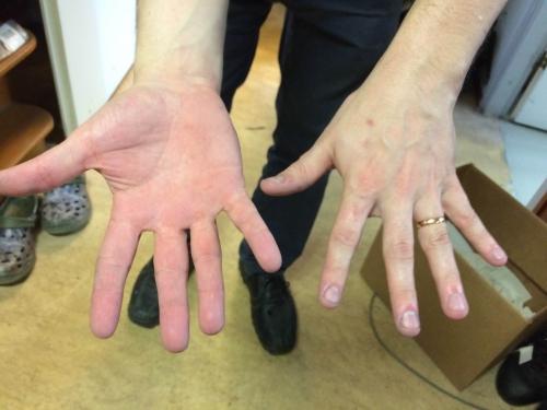 Käsienpesuaine Pevalin special 0,5 L