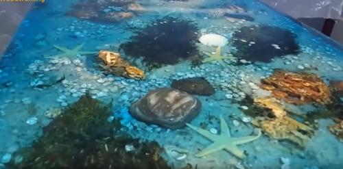 tässä sävytettynä upotettu koralliriutta pöytä!